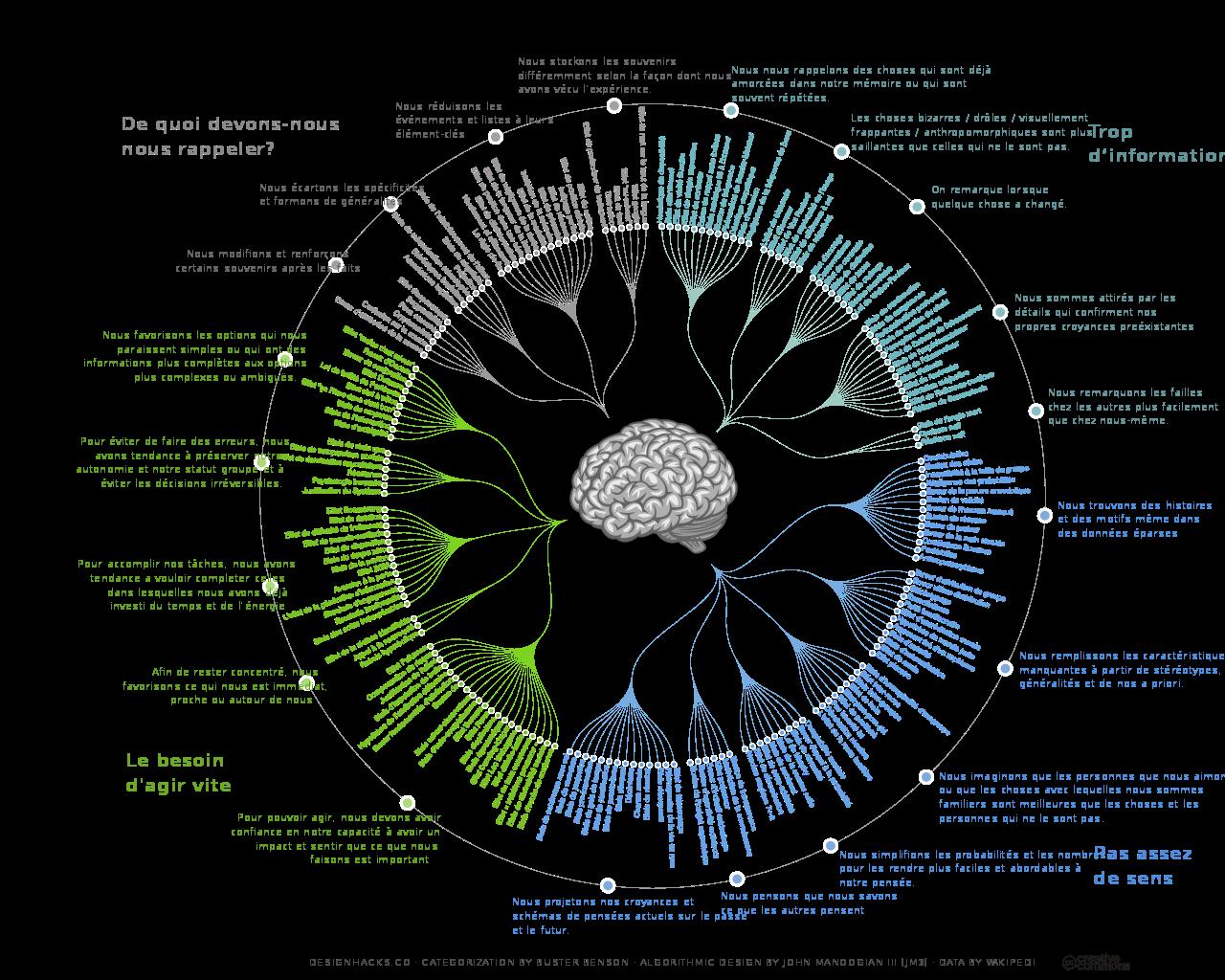 Cartographie des biais cognitifs