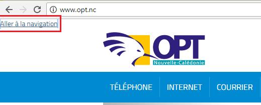 Le lien d'évitement s'affiche en haut à gauche de la page.
